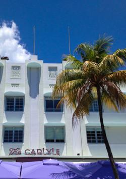 Shade Palm South Beach Miami
