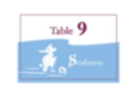 table9.jpg
