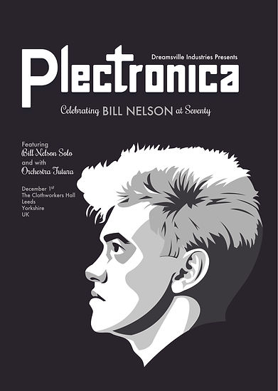 plectronica poster 6web.jpg