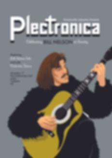 Plectronica poster 3web.jpg