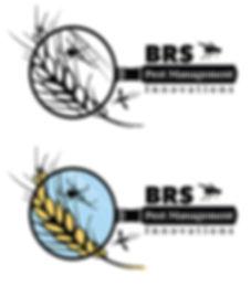 BRSPMIlogo2.jpg