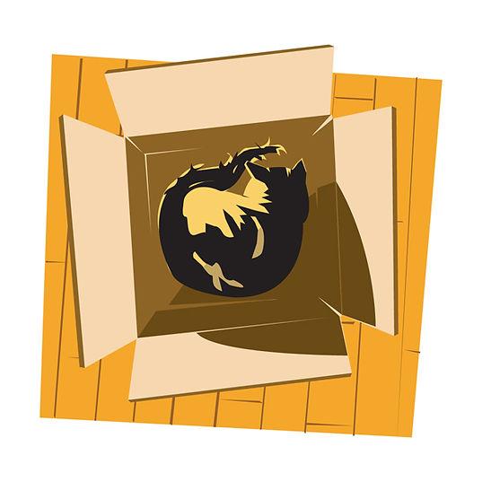 lilybox.jpg