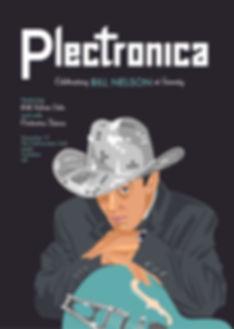 Plectronica poster 7web.jpg