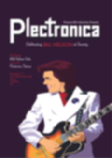 Plectronica poster 4web.jpg