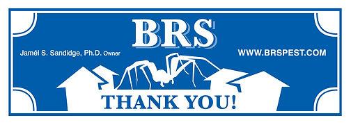 brsbucksbackweb.jpg