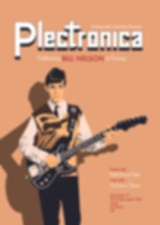 Plectronica poster 2web.jpg