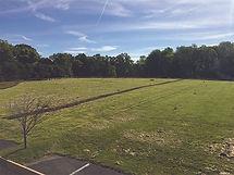 Mowed-Field2.jpg