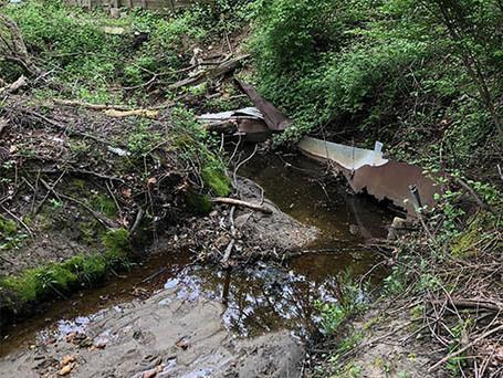 erosion-stabilization-4.jpg