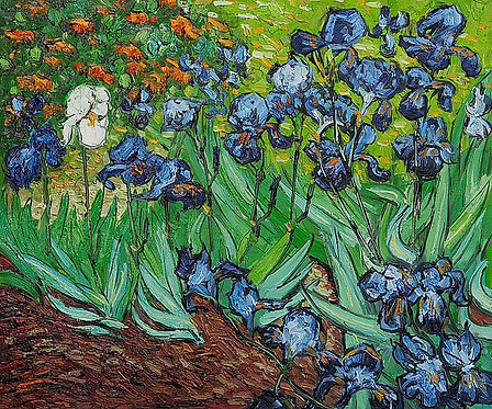 Acrylic Van Gogh Iris May7th