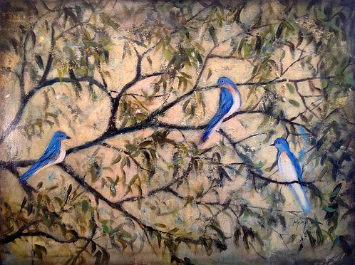Fresco Birds