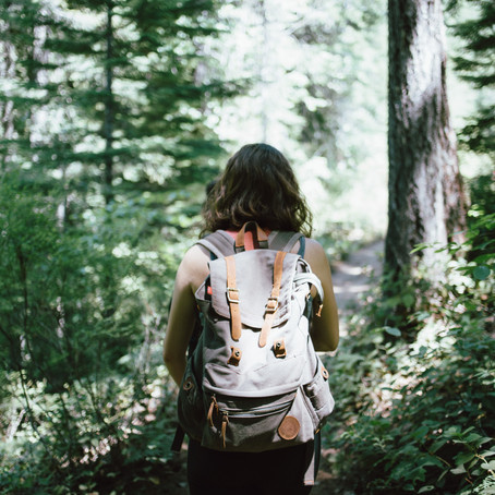 forest bathing: how, when and where.