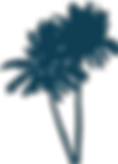 palm_trees_website.png