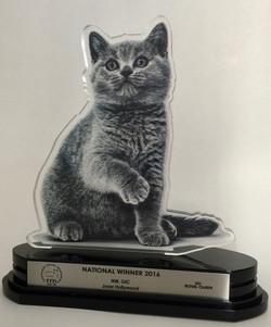 Troféu National Winner 2016