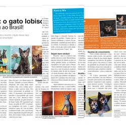 Revista Cães & Cia  Edição Maio 2018