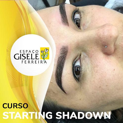 Curso de Starting Shadown