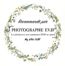 recommandation photographe evjf.png