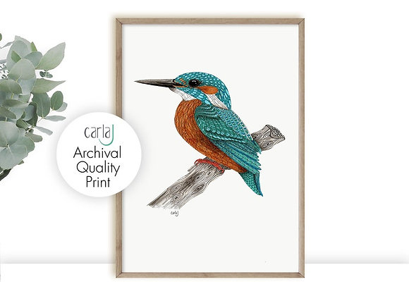 Kingfisher bird art print teal wall art