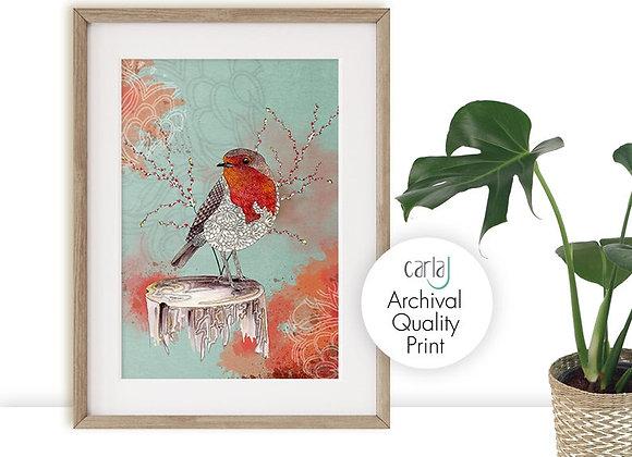 Robin Red Breast, Bird art print