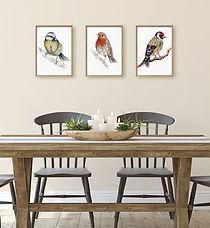 buy british_prints_britsh_garden_birds06
