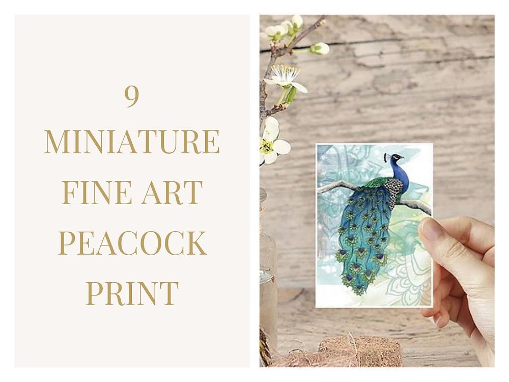 Miniature Fine Art Peacock Print from Carla J