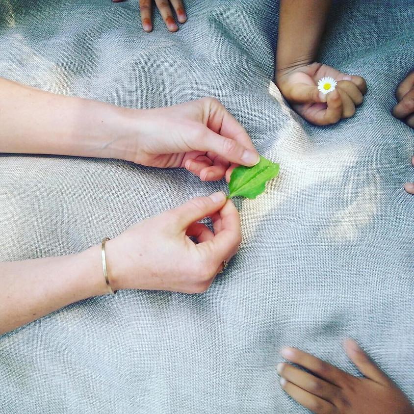 Balade parents/enfants à la rencontre des plantes sauvages