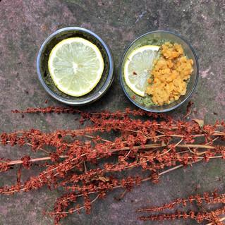 Pâté végétal lentilles corail etortie