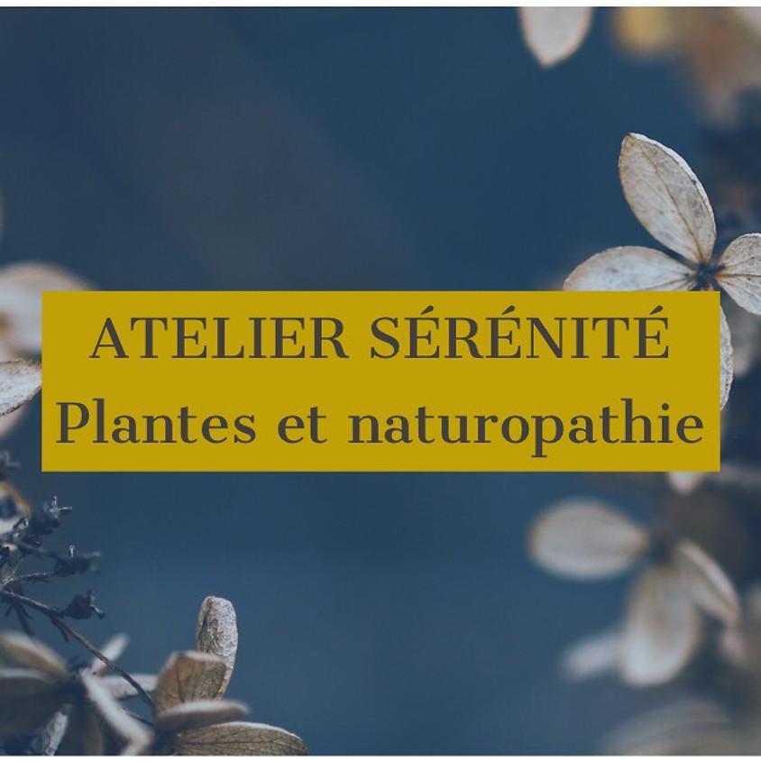 La sérénité grace aux plantes et à la naturopathie