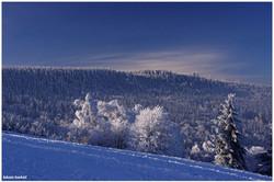 Paszkow - zima 2014
