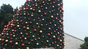 Christmas at Herodium