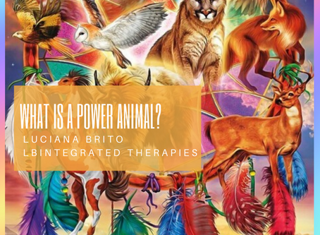 What is a power animal?