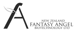 Fantasy Angel Logo