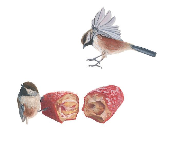 Gaspésie Still Life: Boreal Chickadees and Billot Log