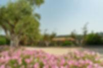 Achilles Hill Hotel Garden Methoni