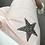Thumbnail: Short STARS