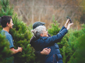Christmas Tree Farm | Mini Session