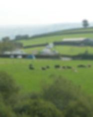 Halse Farm campsite