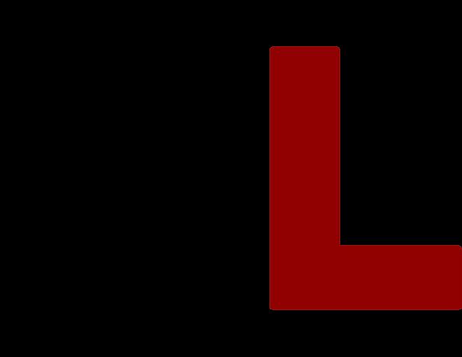 2020 No Limits Logo 'NL'.png
