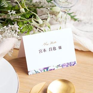 03_image_multicard_sekifuda.jpg