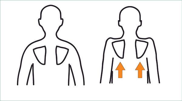 肩甲骨肺呼吸.jpg