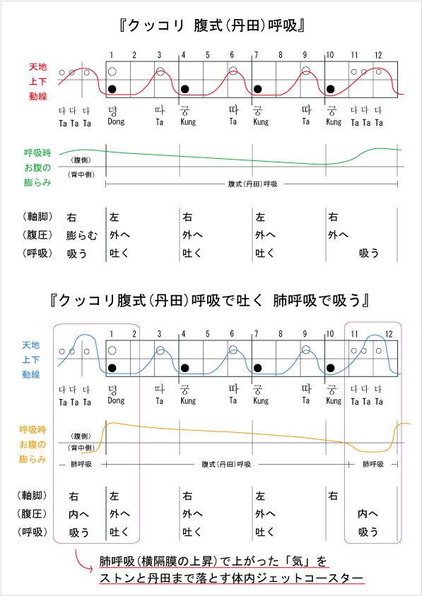 クッコリ呼吸図.jpg