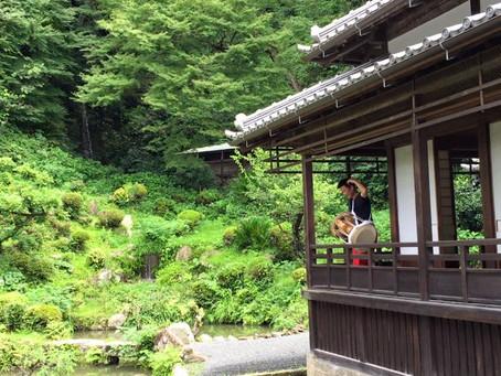 チャンゴウォーク2015 Part3 興津「清見寺」~浜松へ