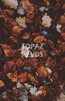 Wallpaper Topa.jpg