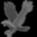 BIOHAZARD_Clan_Master_-_BOW_art_-_Crow_e