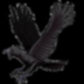 BIOHAZARD_Clan_Master_-_BOW_art_-_Crow.p