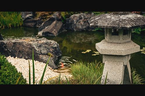 Japanese Garden - Tranquility