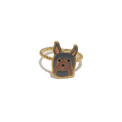 Gubjung & Friends - Yorkshire Terrier Ring