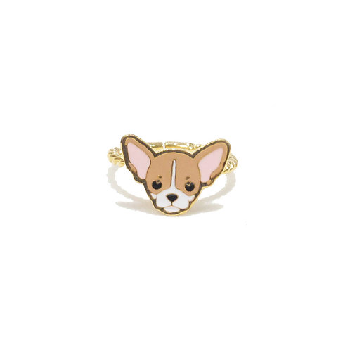 Gubjung & Friends - Chihuahua Ring