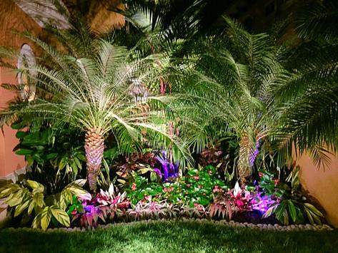 Ideas de Decoración de Jardines con Accesorios y Luces de Colores.