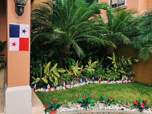 5 TIPS para decorar y mantener el jardín!