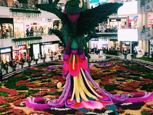 Como conocer los Malls y la Cultura mientras Trabajas - Medellin Colombia.